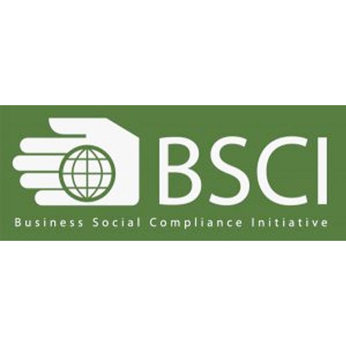 BCSI – Business Social Compliance Initiative logo
